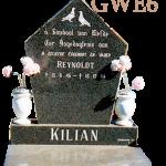Enkel GWE6